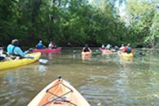 Bayou Vermilion Paddle Trip